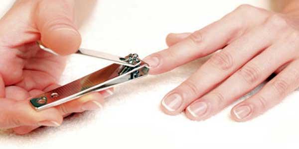 gunting kuku