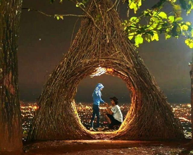 romantisnya hutan pinus pengger