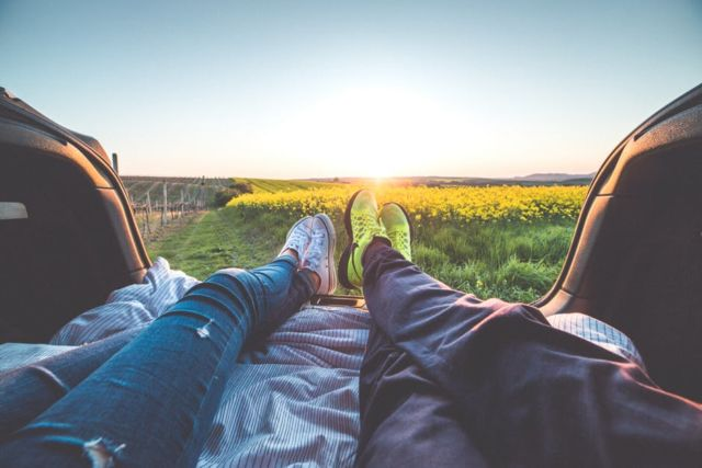 2-people-sitting-with-view-of-yellow-flowers-during-daytime