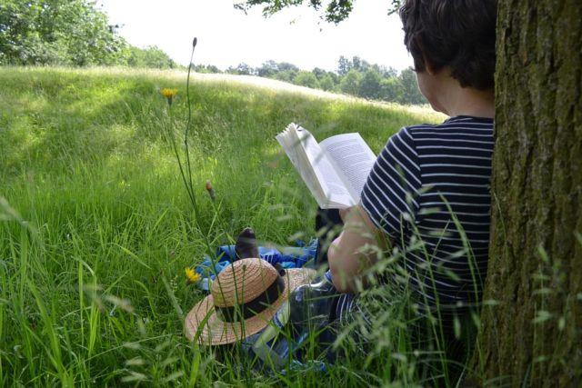 Membaca adalah belajar
