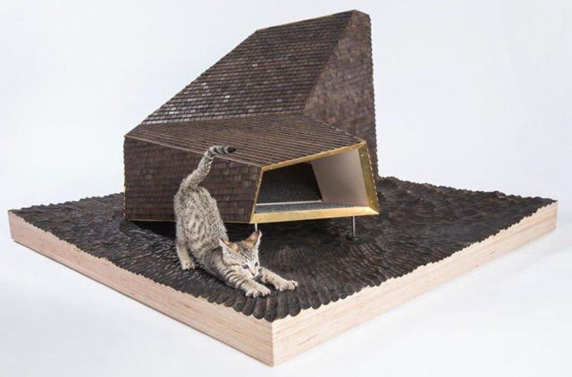 Exploration shelter