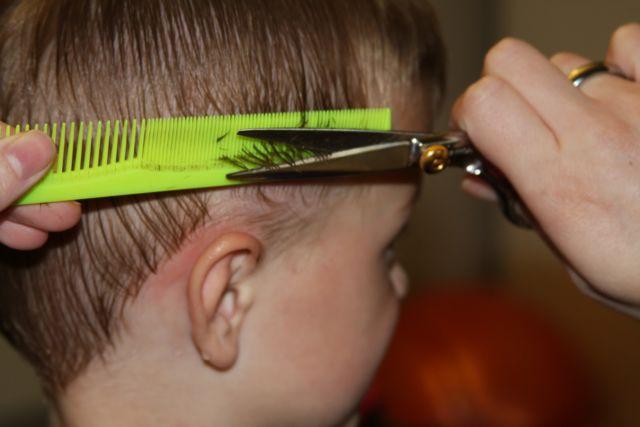 Gunakan gunting yang tepat
