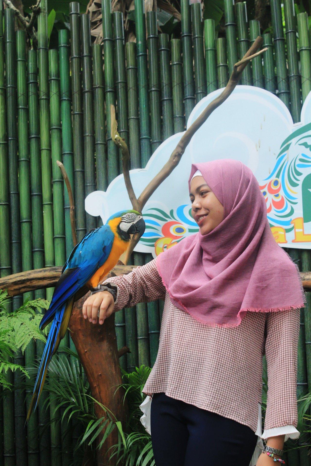 Nurul Fajriyah