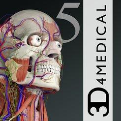 Belajar anatomi lebih menyenangkan dengan sistem 3D :)