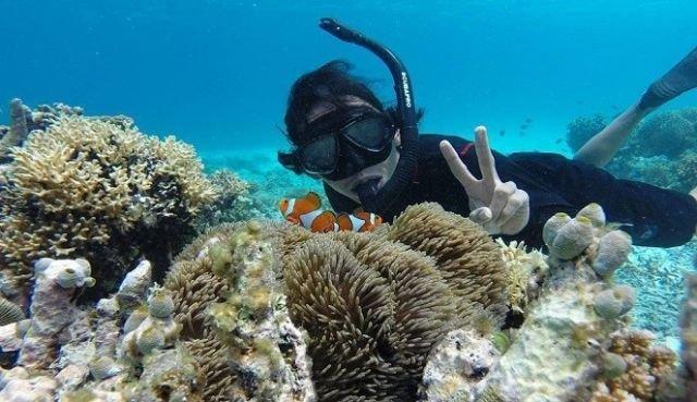 Diving di Pulau Kapoposan