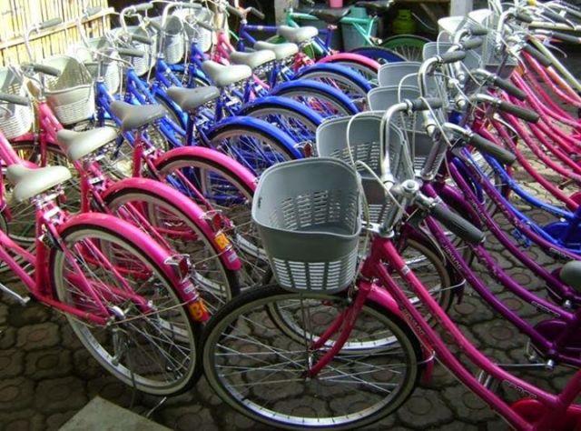 Sepeda sebagai salah satu tranportasi utama