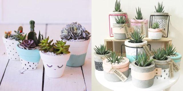 Kaktus dan succulent