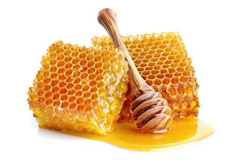 Madu berasal dari lebah yang membentuk koloni