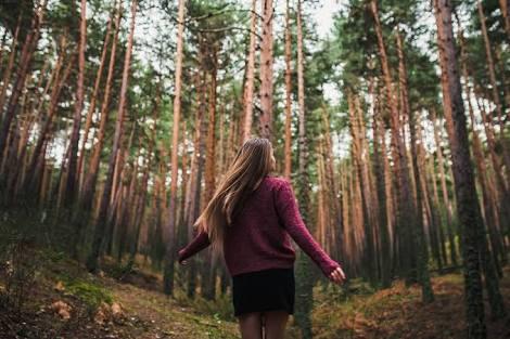 Sehari tanpamu bagai misteri dalam hutan sendirian